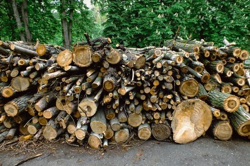 taille du bois - choisir la taille du bois de chauffage comment faire - Combustibles Gruchy