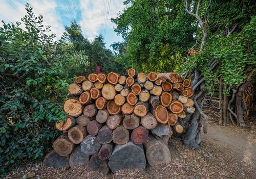 Bois de chauffage 76 -ou acheter son bois de chauffage : Combustibles Gruchy vous livrent partout en France