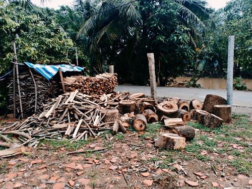 livraison de bois bois de chauffage dans le