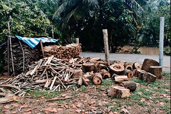 Qu'est-ce que le bois de chauffage ?